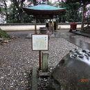 最御崎寺(東寺)