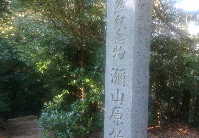 弥山原始林