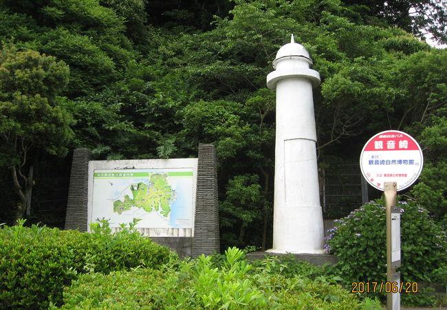 観音崎 (神奈川県)