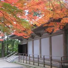 金色堂と紅葉