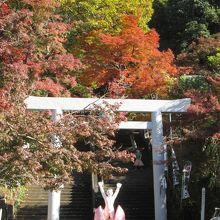 紅葉の桃太郎神社