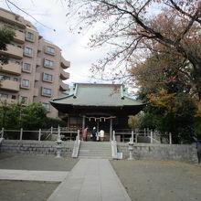 鳥居から本殿までの参道は長く境内も広く見ごたえあります。