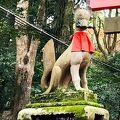 伏見稲荷大社 境内のキツネ