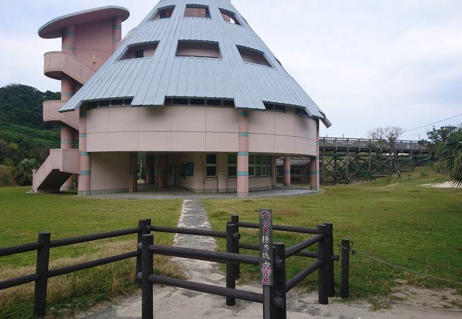 浦田キャンプ場