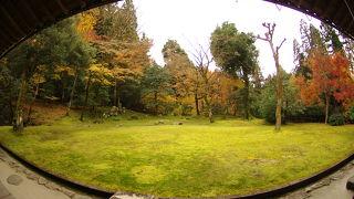 孤篷庵庭園