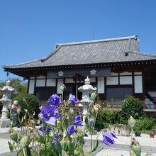 長瀞七草の桔梗のお寺