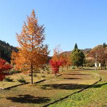 お勧め。有料でしたが、園内の紅葉がきれいでした。