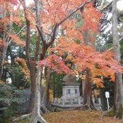 成田山公園の中心 下に降りると池がある