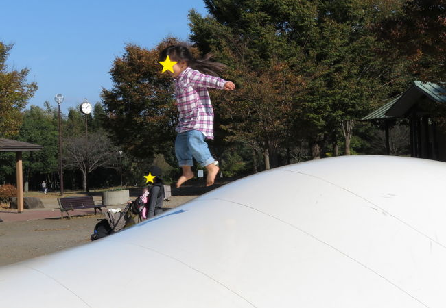 神奈川県立茅ケ崎里山公園