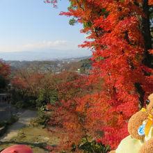 紅葉と市街の眺めを一望できます