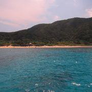 阿嘉島の代表的なビーチスポット