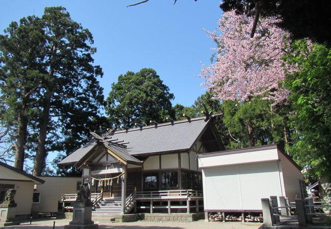 意冨比神社