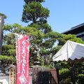 九州相良蔵めぐり (人吉蔵めぐり)