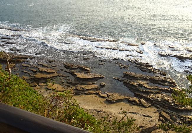 化石の産地