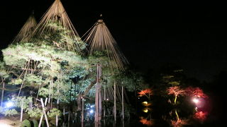 金沢城・兼六園ライトアップ 秋の段