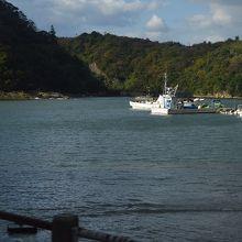 新鮮な魚介が届く温泉津港