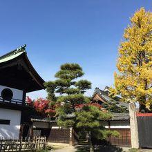緑に囲まれ境内も広く、仏殿の天井画は一味違う
