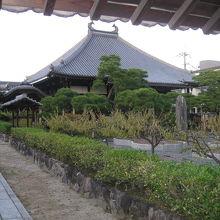 梅林寺本堂と境内
