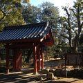 写真:入徳門 (津城)