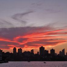 華やかなシドニーの夜