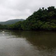 マングローブの茂る流域