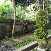 庭も手入れされていてきれい。リスも見かけます!