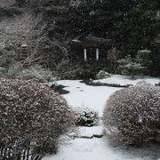 モミジもきれいですが、雪の庭園も素晴らしい