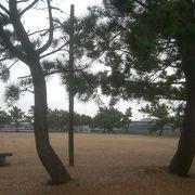 松の植栽が良い雰囲気を出しています。