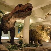 四国で一番の博物館!