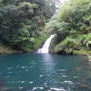 亜熱帯の森に囲まれた場所にある美しい滝