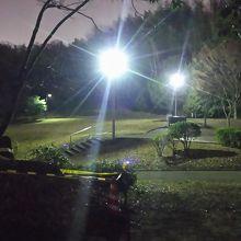 夜の公園に行きました