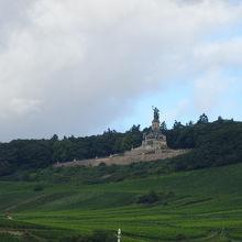 ブドウ畑の丘の上