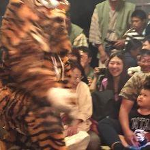 客室になだれ込む虎に観客も大興奮
