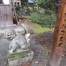 狛犬 (常堅寺)