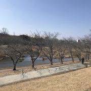 細口池公園