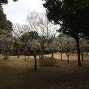県立幕張海浜公園