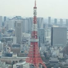 東京タワーも上から下まで見ることができます。