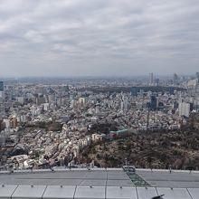 渋谷と新宿方面です。