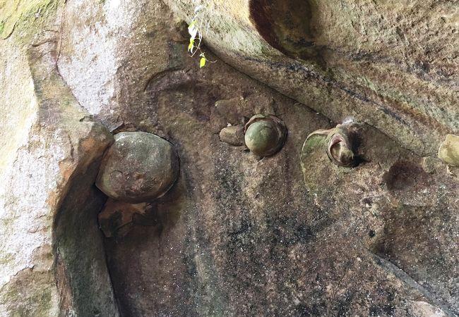 丸目の乳岩様