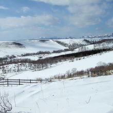 冬の牧草地と山
