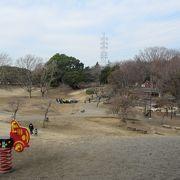 ちびっ子には遊び放題の公園