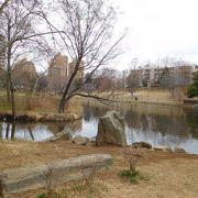 大きな池のある公園