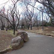 徳川吉宗ゆかりの場所です。
