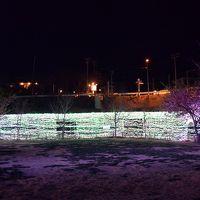 部屋からの文化公園ライトアップ