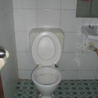 今回のトイレは、きれいに掃除されています。感じが良いですね。