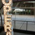 シドニー オペラ ハウス ツアー