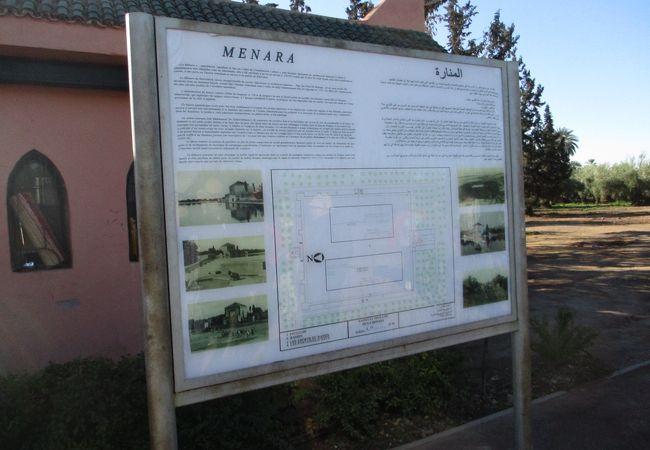 貯水池とオリーブの木々が広がる庭園で、池の畔の離宮は王様たちの逢引きの場だったそうで、現代ではマラケシュの人々のデートスポットだそうです。