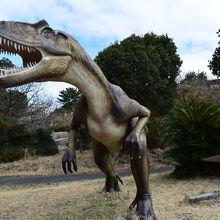 恐竜ゾーン