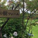栗の樹ファーム
