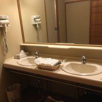 洗面ボウルは二つあり複数人使用出来て良い。